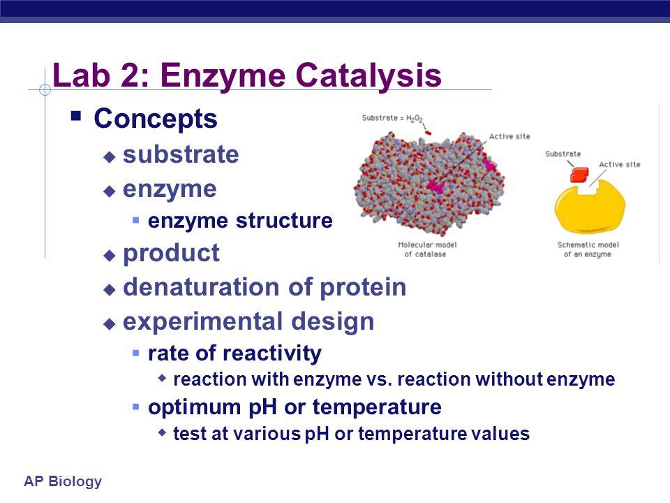 AP Biology Lab 4: Photosynthesis  Concepts  photosynthesis  Photosystem 1  NADPH  chlorophylls & other plant pigments  chlorophyll a  chlorophyll b  xanthophylls  carotenoids  experimental design  control vs.