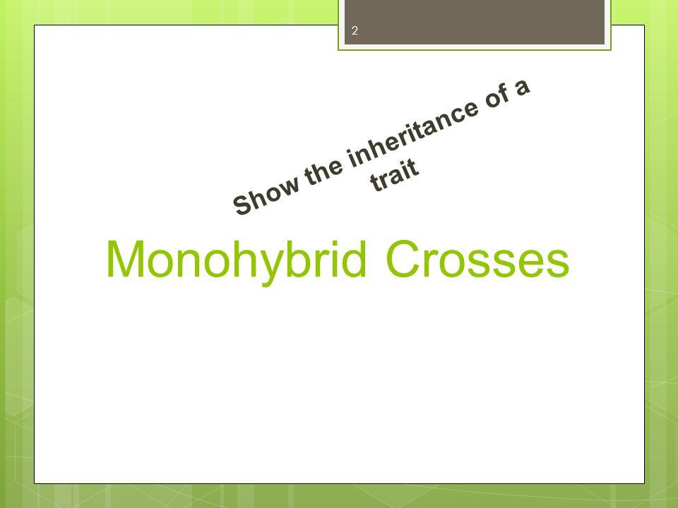 Monohybrid Crosses Show the inheritance of a trait 2