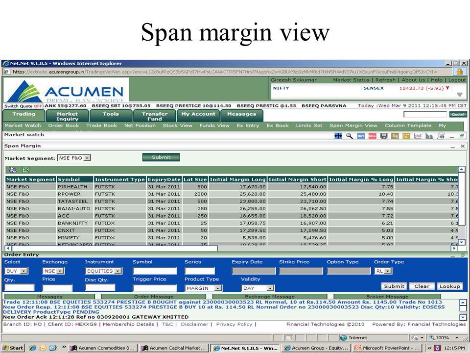 Span margin view