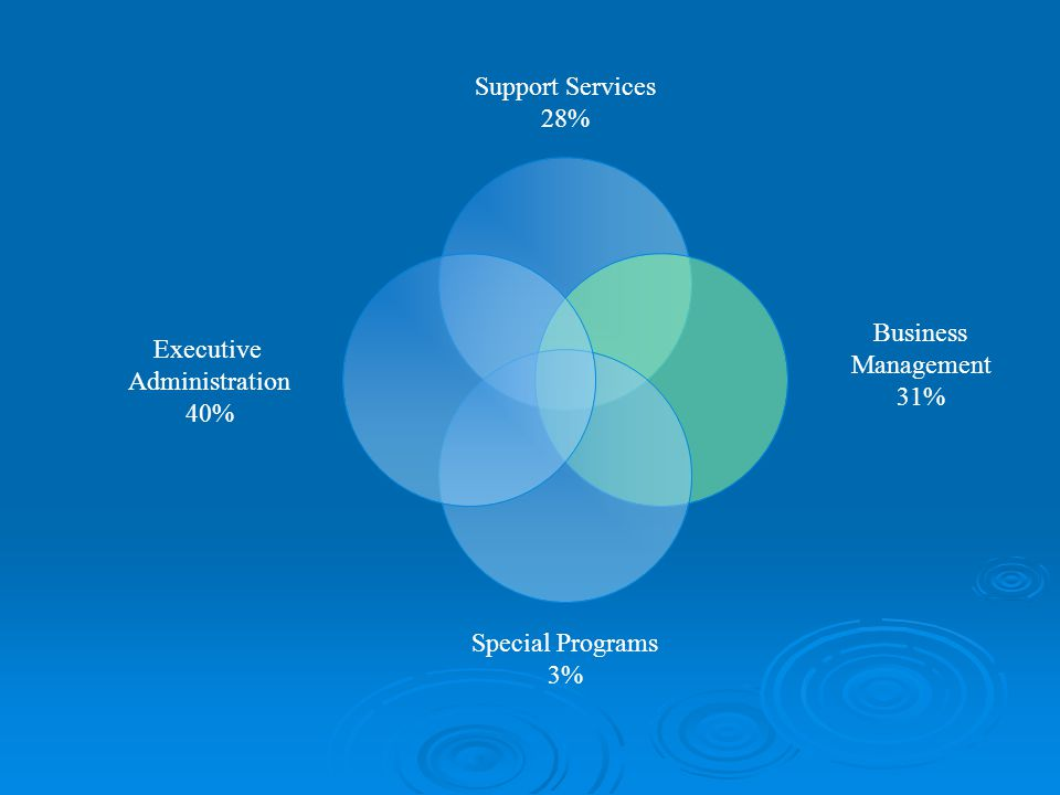 Support Services 28% Business Management 31% Special Programs 3% Executive Administration 40%