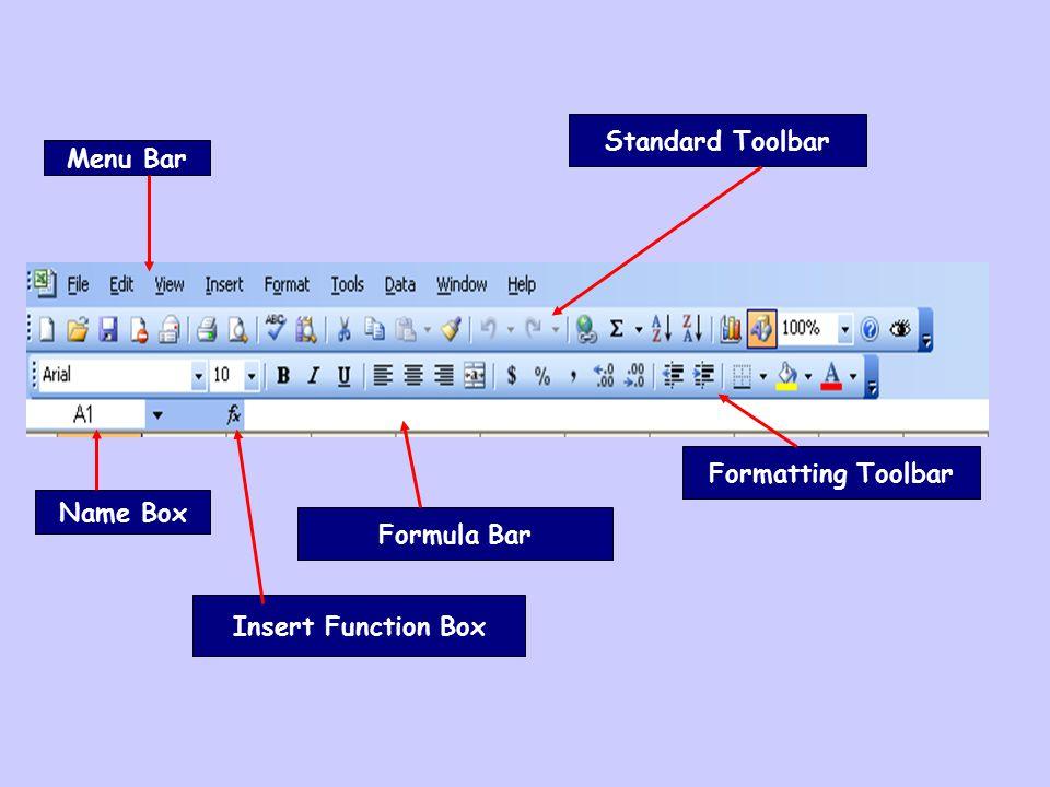Name Box Formula Bar Standard Toolbar Formatting Toolbar Menu Bar Insert Function Box