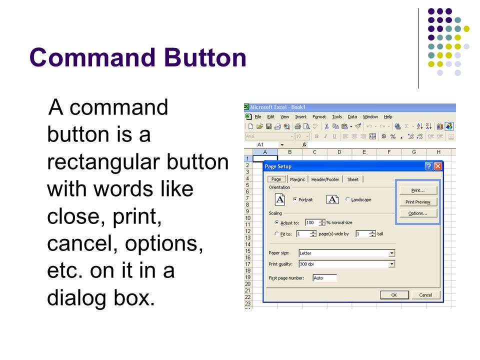 Command Button A command button is a rectangular button with words like close, print, cancel, options, etc.