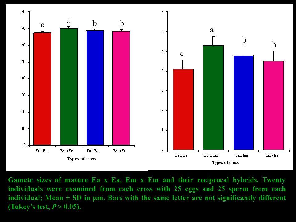 Gamete sizes of mature Ea x Ea, Em x Em and their reciprocal hybrids.