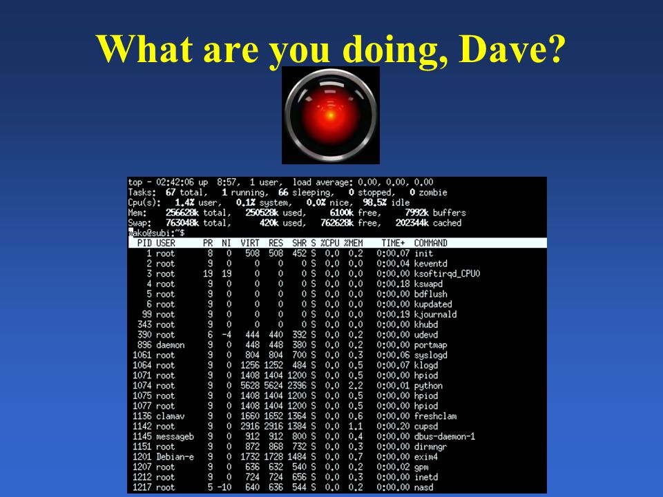 What are you doing, Dave?