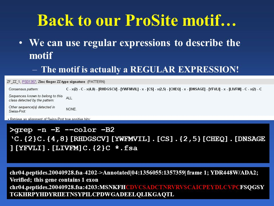 Back to our ProSite motif… We can use regular expressions to describe the motif –The motif is actually a REGULAR EXPRESSION.