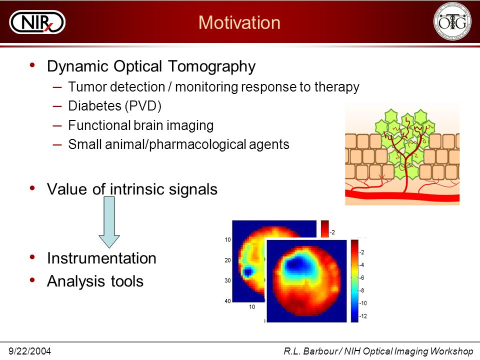 9/22/2004R.L. Barbour / NIH Optical Imaging Workshop Motivation Dynamic Optical Tomography – Tumor detection / monitoring response to therapy – Diabet