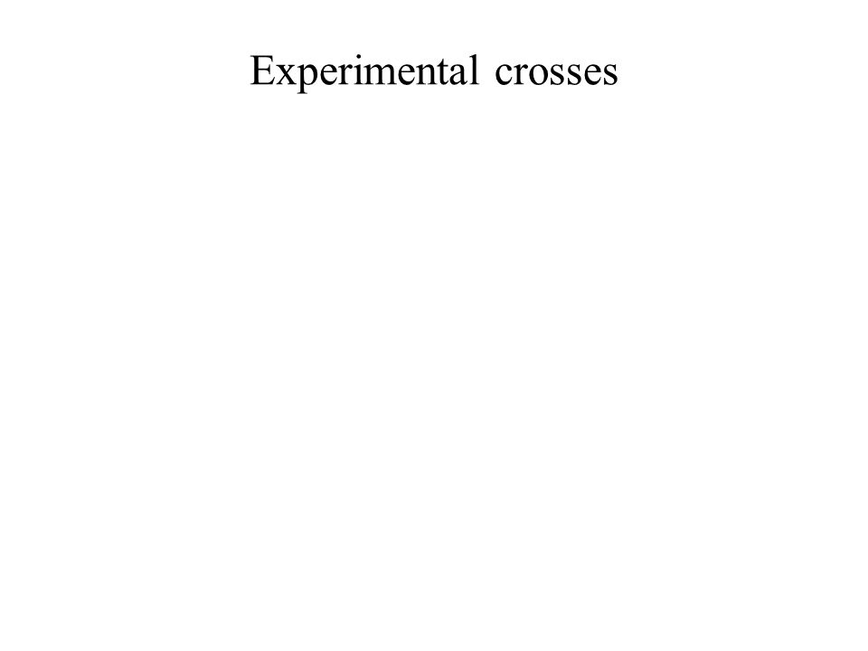 Experimental crosses