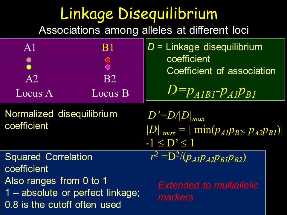 Linkage Disequilibrium D=p A1B1 -p A1 p B1 D = Linkage disequilibrium coefficient Coefficient of association Locus A Locus B A1 B1 A2 B2 Associations among alleles at different loci D'=D/|D| max |D| max = | min(p A1 p B2, p A2 p B1 )| -1  D'  1 r 2 =D 2 /(p A1 p A2 p B1 p B2 ) Normalized disequilibrium coefficient Squared Correlation coefficient Also ranges from 0 to 1 1 – absolute or perfect linkage; 0.8 is the cutoff often used Extended to multiallelic markers