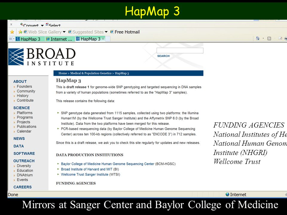 Mirrors at Sanger Center and Baylor College of Medicine FUNDING AGENCIES National Institutes of Health – National Human Genome Research Institute (NHGRI) Wellcome Trust HapMap 3