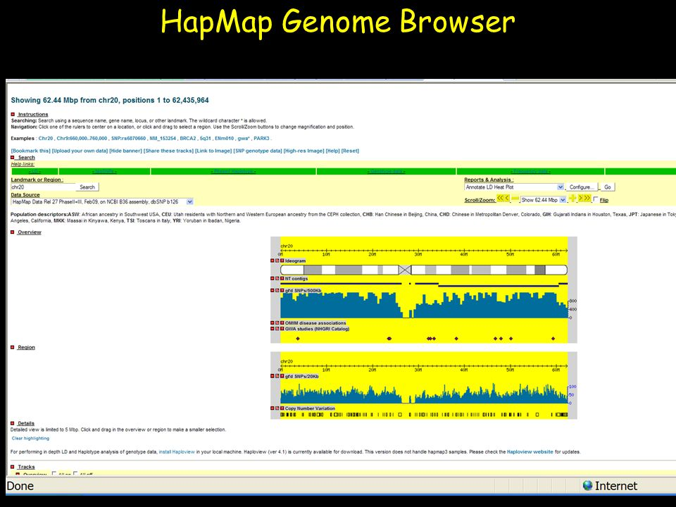 HapMap Genome Browser