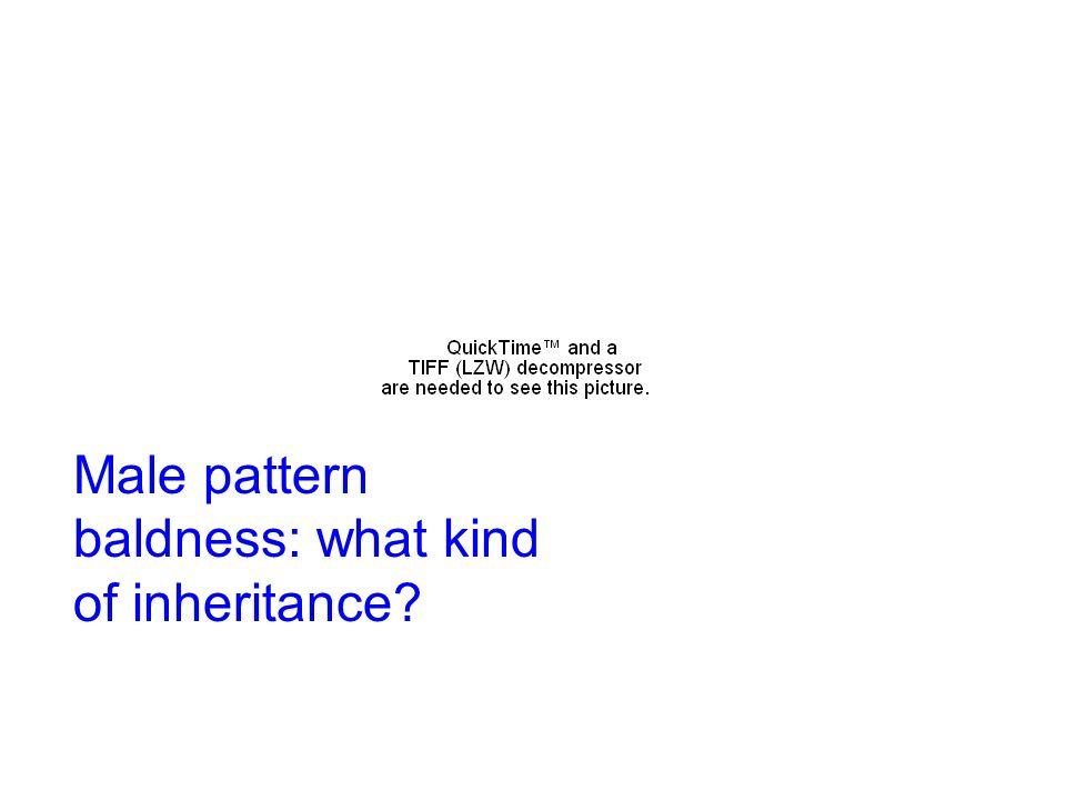 Male pattern baldness: what kind of inheritance?