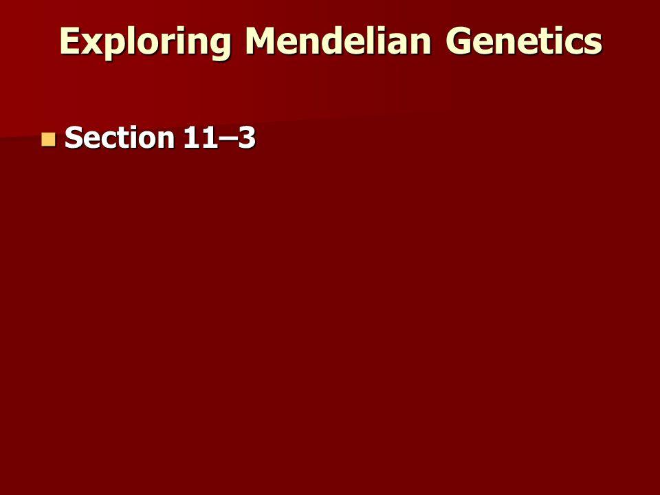 Exploring Mendelian Genetics Section 11–3 Section 11–3