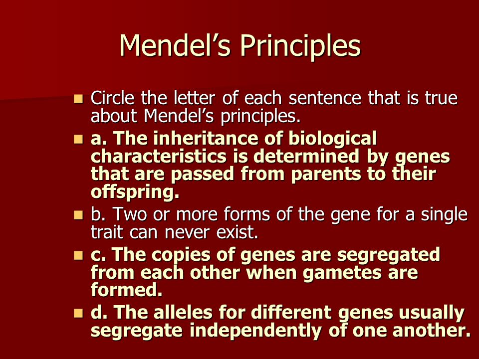 Mendel's Principles Circle the letter of each sentence that is true about Mendel's principles. Circle the letter of each sentence that is true about M