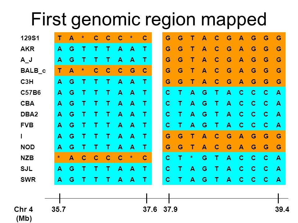 First genomic region mapped 129S1TA*CCC*CGGTACGAGGG AKRAGTTTAATGGTACGAGGG A_JAGTTTAATGGTACGAGGG BALB_cTA*CCCGCGGTACGAGGG C3HAGTTTAATGGTACGAGGG C57B6AGTTTAATCTAGTACCCA CBAAGTTTAATCTAGTACCCA DBA2AGTTTAATCTAGTACCCA FVBAGTTTAATCTAGTACCCA IAGTTTAATGGTACGAGGG NODAGTTTAATGGTACGAGGG NZB*ACCCC*CCT*GTACCCA SJLAGTTTAATCTAGTACCCA SWRAGTTTAATCTAGTACCCA Chr 4 35.7 37.6 37.9 39.4 (Mb)
