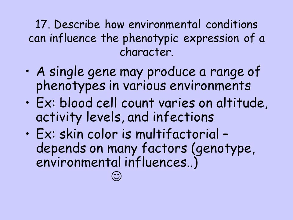 17. Describe how environmental conditions can influence the phenotypic expression of a character. A single gene may produce a range of phenotypes in v