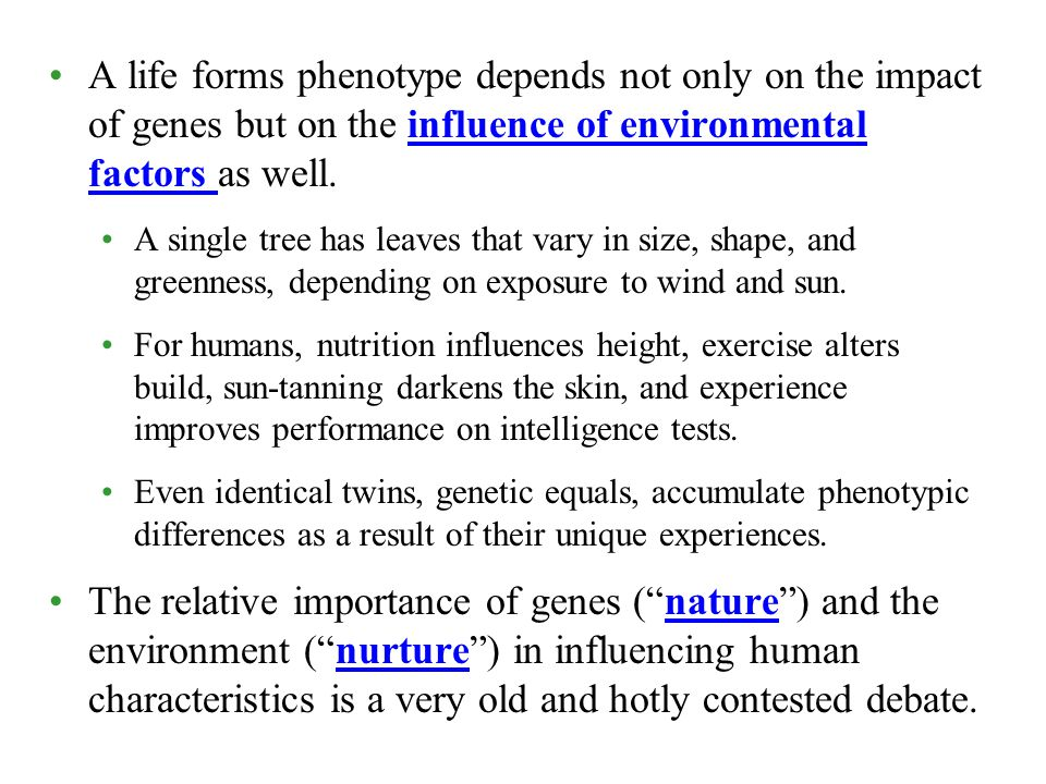 A life forms phenotype depends not only on the impact of genes but on the influence of environmental factors as well. A single tree has leaves that va