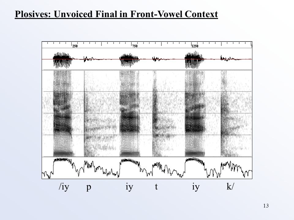 13 Plosives: Unvoiced Final in Front-Vowel Context /iy p iy t iy k/
