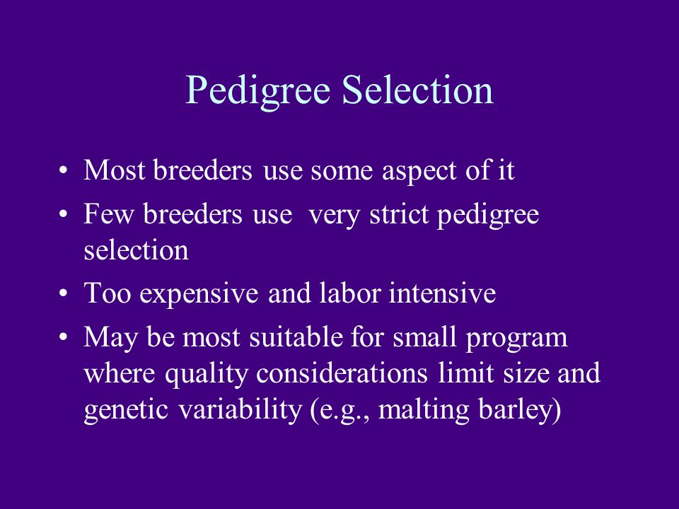 Pedigree Selection Most breeders use some aspect of it Few breeders use very strict pedigree selection Too expensive and labor intensive May be most suitable for small program where quality considerations limit size and genetic variability (e.g., malting barley)