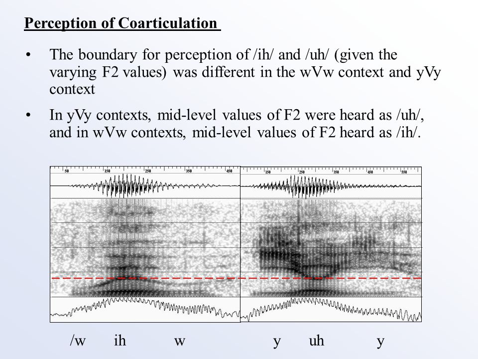 Perception of Coarticulation The boundary for perception of /ih/ and /uh/ (given the varying F2 values) was different in the wVw context and yVy context In yVy contexts, mid-level values of F2 were heard as /uh/, and in wVw contexts, mid-level values of F2 heard as /ih/.