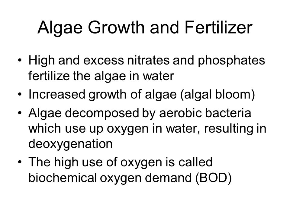 Algae Growth and Fertilizer High and excess nitrates and phosphates fertilize the algae in water Increased growth of algae (algal bloom) Algae decomposed by aerobic bacteria which use up oxygen in water, resulting in deoxygenation The high use of oxygen is called biochemical oxygen demand (BOD)