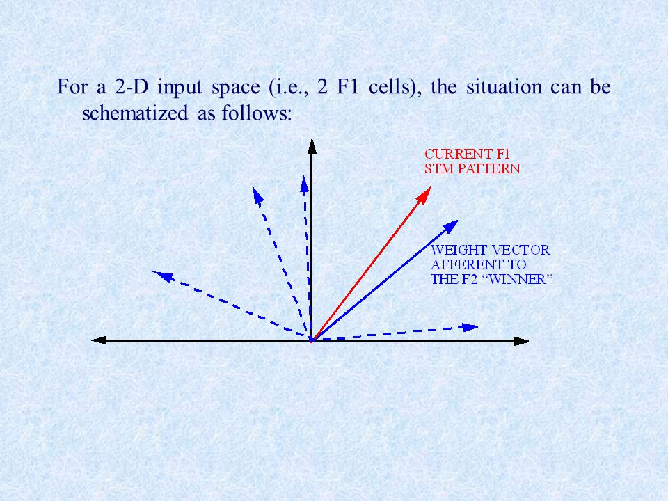 For a 2-D input space (i.e., 2 F1 cells), the situation can be schematized as follows: