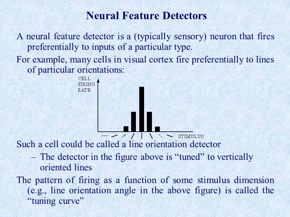 Neural Feature Detectors A neural feature detector is a (typically sensory) neuron that fires preferentially to inputs of a particular type.