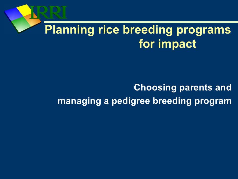 Planning rice breeding programs for impact Choosing parents and managing a pedigree breeding program