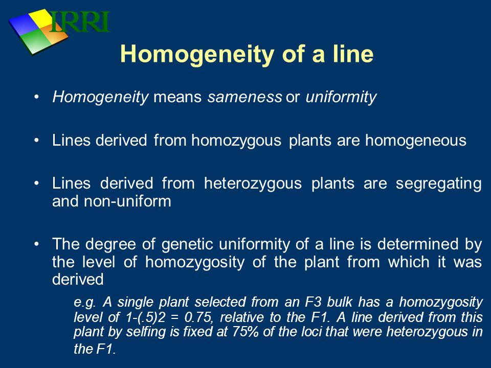 Homogeneity of a line Homogeneity means sameness or uniformity Lines derived from homozygous plants are homogeneous Lines derived from heterozygous pl