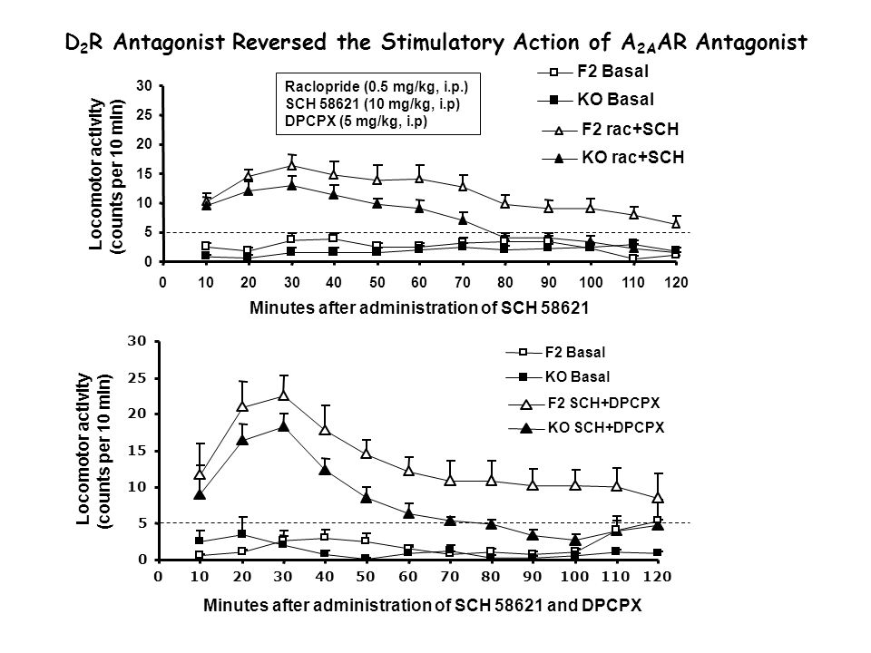 D 2 R Antagonist Reversed the Stimulatory Action of A 2A AR Antagonist Raclopride (0.5 mg/kg, i.p.) SCH 58621 (10 mg/kg, i.p) DPCPX (5 mg/kg, i.p)