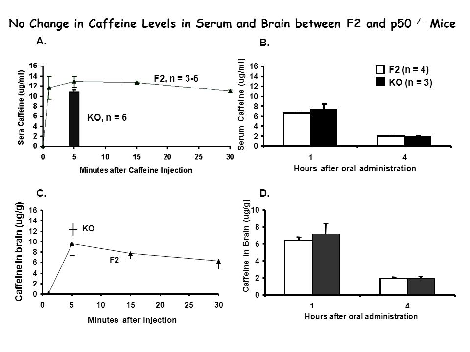 A. B. C.D. 0 2 4 6 8 10 12 14 16 14 Hours after oral administration Serum Caffeine (ug/ml) 0 2 4 6 8 10 14 Hours after oral administration Caffeine in