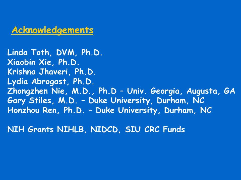 Acknowledgements Linda Toth, DVM, Ph.D. Xiaobin Xie, Ph.D. Krishna Jhaveri, Ph.D. Lydia Abrogast, Ph.D. Zhongzhen Nie, M.D., Ph.D – Univ. Georgia, Aug