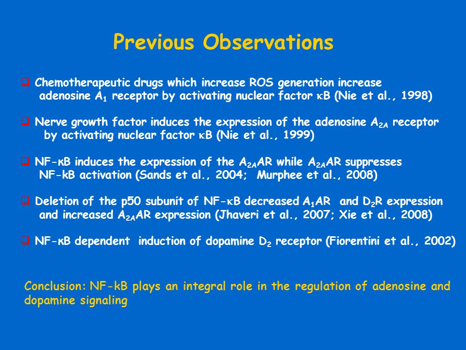  Chemotherapeutic drugs which increase ROS generation increase adenosine A 1 receptor by activating nuclear factor  B (Nie et al., 1998)  Nerve gro