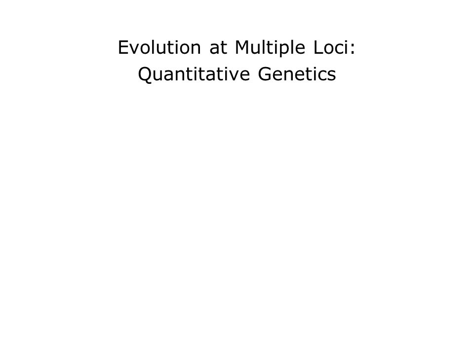 Evolution at Multiple Loci: Quantitative Genetics