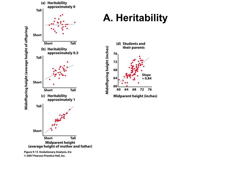 A. Heritability