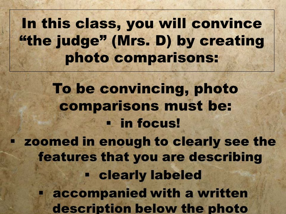In this class, you will convince the judge (Mrs.