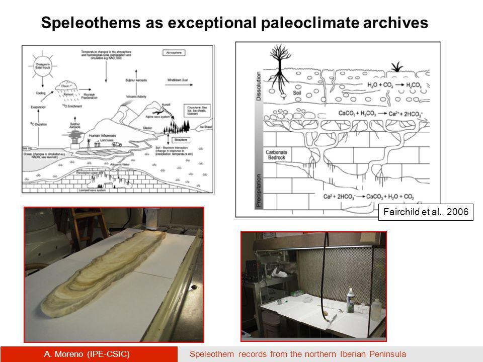 Fairchild et al., 2006 Speleothems as exceptional paleoclimate archives A.