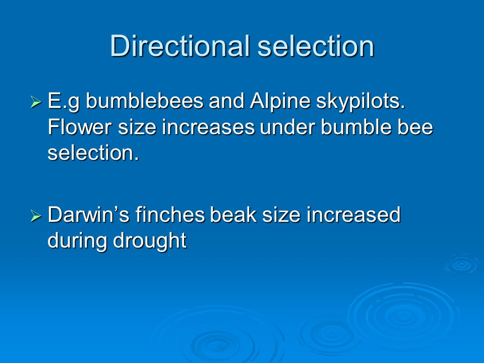Directional selection  E.g bumblebees and Alpine skypilots. Flower size increases under bumble bee selection.  Darwin's finches beak size increased