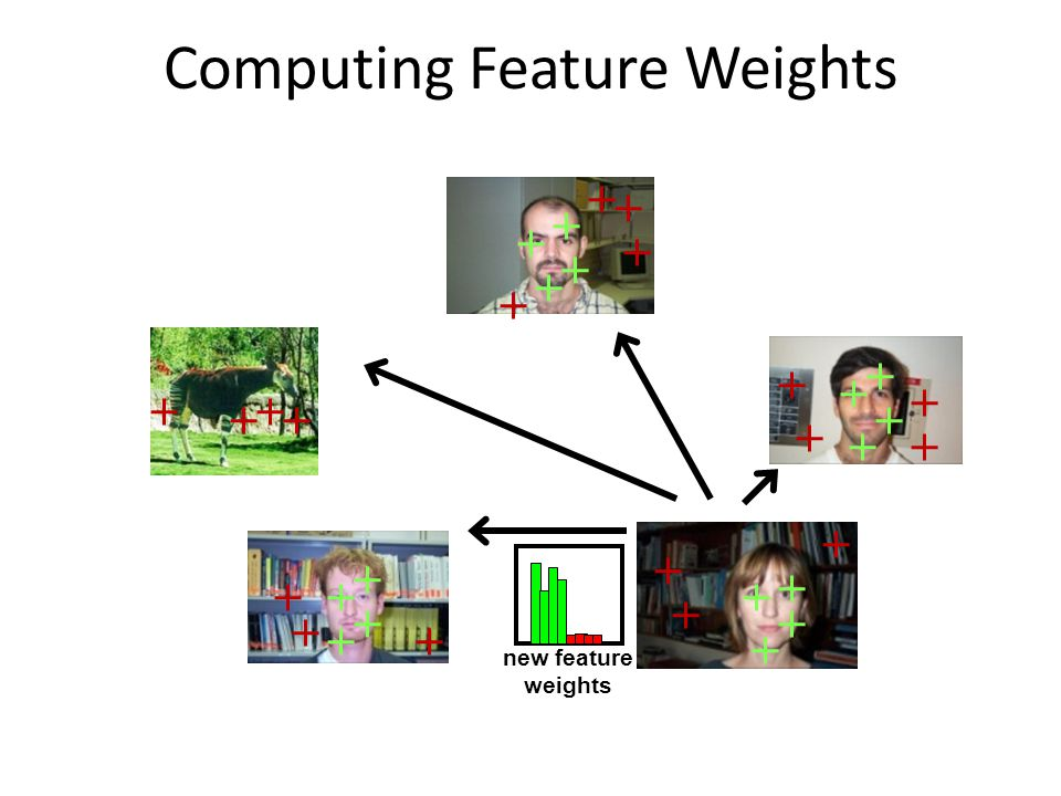 Computing Feature Weights new feature weights
