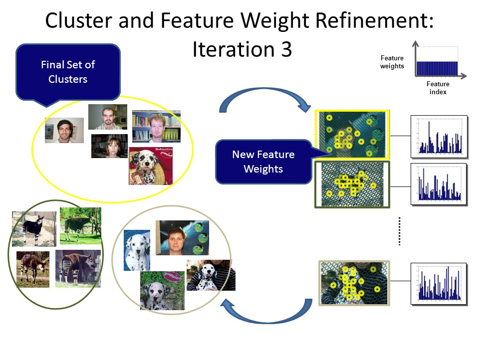 Cluster and Feature Weight Refinement: Iteration 3 Feature index Feature weights Pair-wise Partial Matching + Normalized Cuts Final Set of Clusters New Feature Weights