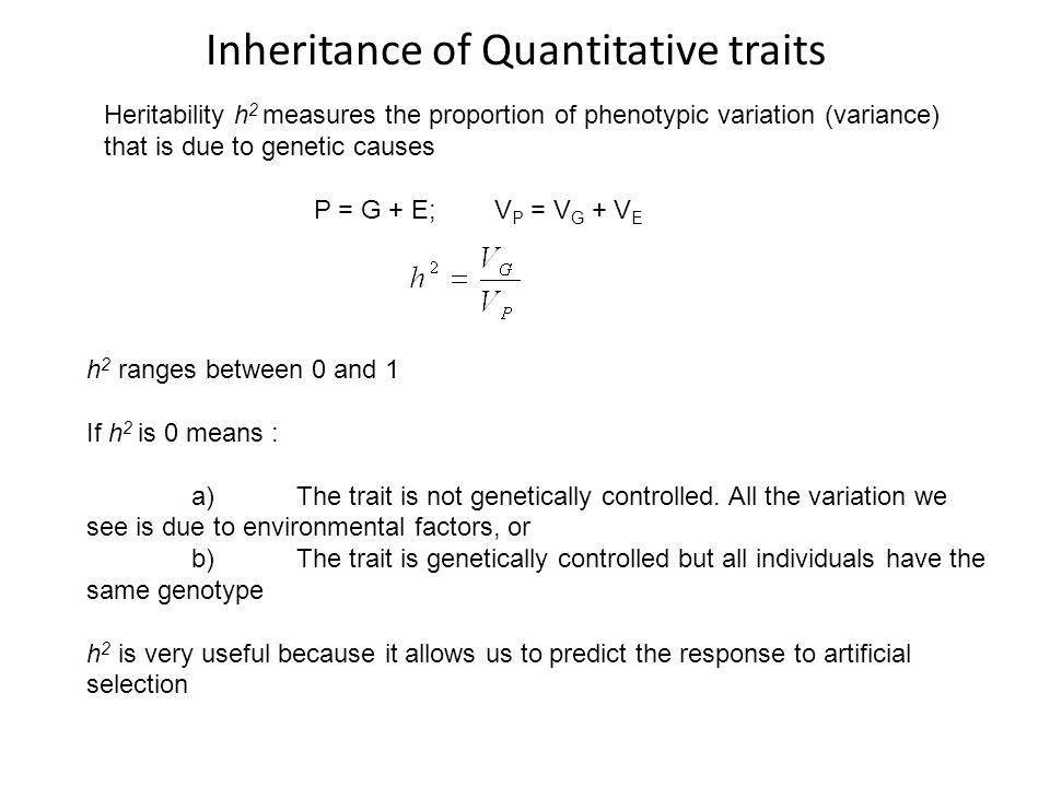 Inheritance of Quantitative traits Heritability h 2 measures the proportion of phenotypic variation (variance) that is due to genetic causes P = G + E