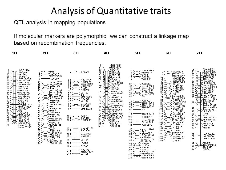 Analysis of Quantitative traits QTL analysis in mapping populations If molecular markers are polymorphic, we can construct a linkage map based on reco
