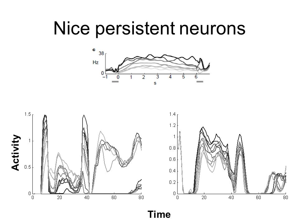 Nice persistent neurons Time Activity