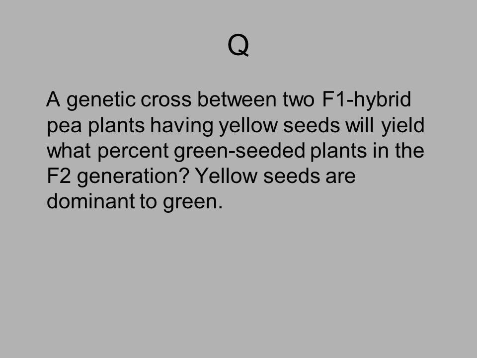 Q A genetic cross between two F1-hybrid pea plants having yellow seeds will yield what percent green-seeded plants in the F2 generation? Yellow seeds