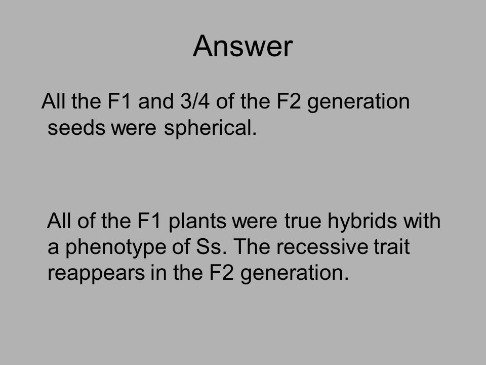 Answer All the F1 and 3/4 of the F2 generation seeds were spherical. All of the F1 plants were true hybrids with a phenotype of Ss. The recessive trai