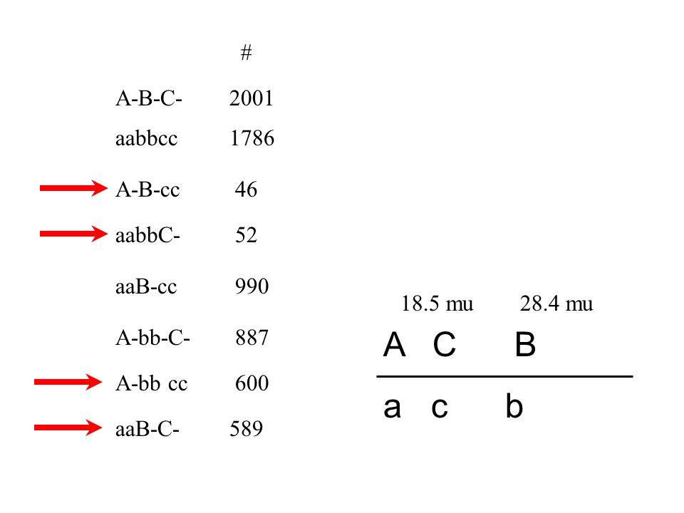 A-B-C- A-B-cc A-bb-C- A-bb cc aaB-C- aaB-cc aabbC- # 2001 52 46 589 990 887 600 aabbcc1786 Region I A C B a c b I 990 + 887 + 52 + 46 6951 x 100 = 28.4 mu