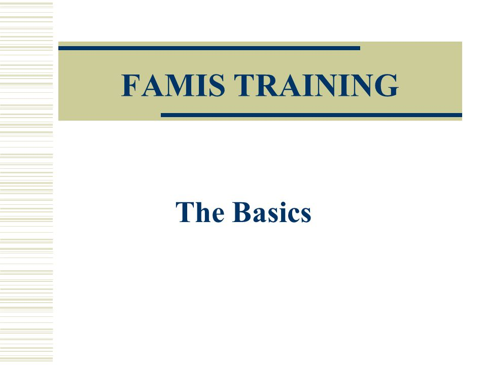 FAMIS TRAINING The Basics