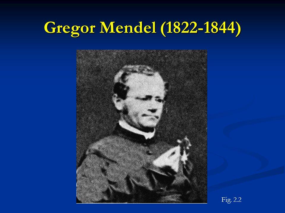 Gregor Mendel (1822-1844) Fig. 2.2