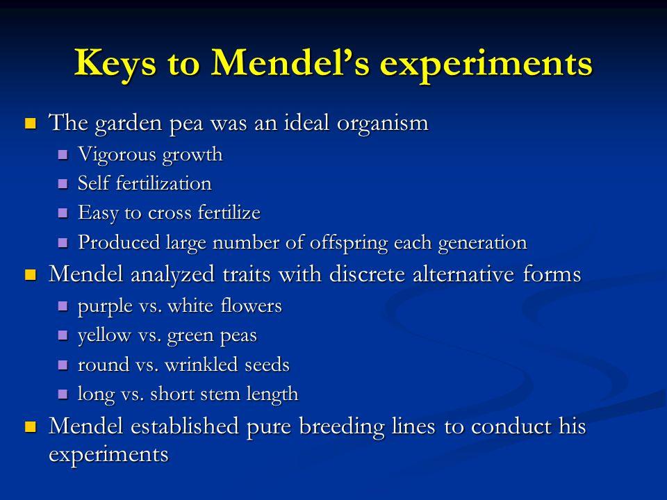 Keys to Mendel's experiments The garden pea was an ideal organism The garden pea was an ideal organism Vigorous growth Vigorous growth Self fertilizat