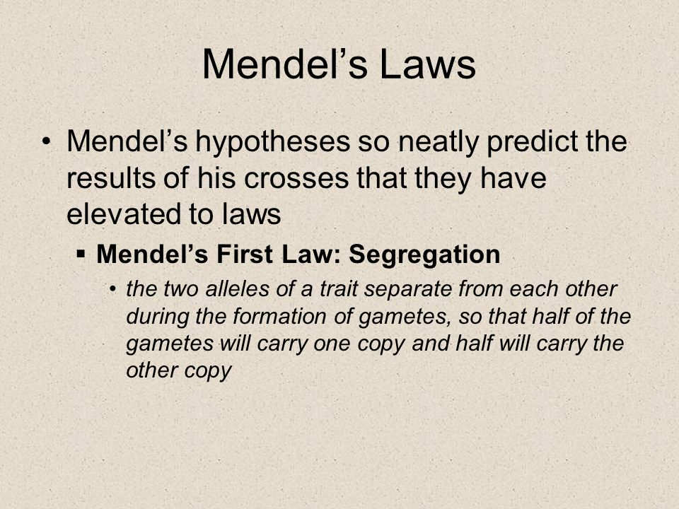 Mendel's Laws Mendel's hypotheses so neatly predict the results of his crosses that they have elevated to laws  Mendel's First Law: Segregation the t