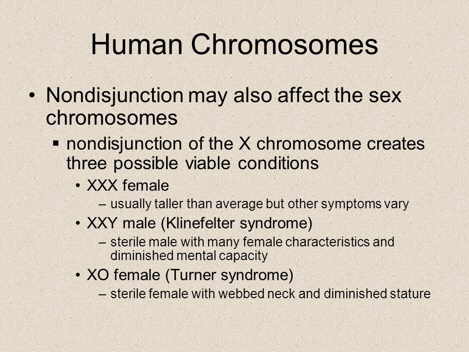 Human Chromosomes Nondisjunction may also affect the sex chromosomes  nondisjunction of the X chromosome creates three possible viable conditions XXX